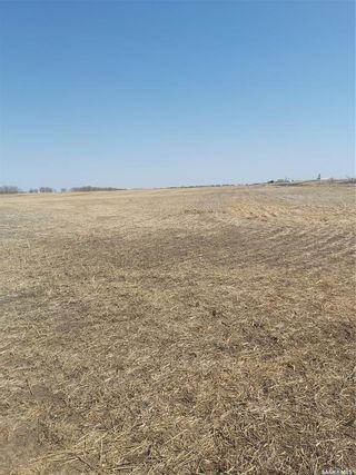 Photo 5: Patkau   land in Rosedale: Farm for sale (Rosedale Rm No. 283)  : MLS®# SK849478