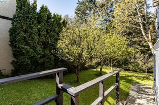 Photo 23: 685 Daffodil Ave in VICTORIA: SW Marigold House for sale (Saanich West)  : MLS®# 813850
