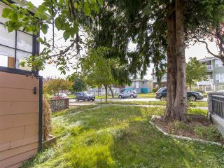 Photo 11: 3123 E 4TH Avenue in Vancouver: Renfrew VE House for sale (Vancouver East)  : MLS®# R2106855