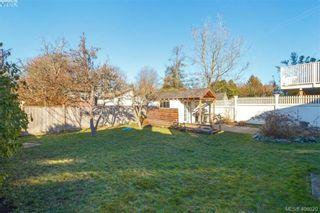Photo 23: 1416 Denman St in VICTORIA: Vi Fernwood House for sale (Victoria)  : MLS®# 806894