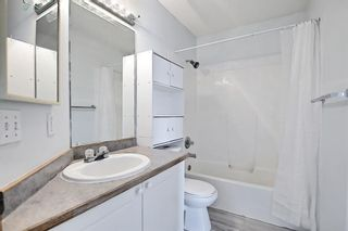 Photo 36: 22 Martin Crossing Way NE in Calgary: Martindale Detached for sale : MLS®# A1141099