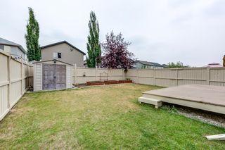 Photo 31: 4608 162A Avenue in Edmonton: Zone 03 House for sale : MLS®# E4255114