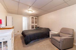 Photo 43: 41 BUTTERFIELD Crescent: St. Albert House for sale : MLS®# E4257627