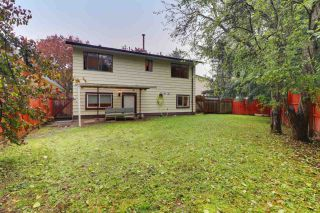 "Photo 14: 12864 67B Avenue in Surrey: West Newton House for sale in ""Newton"" : MLS®# R2511069"