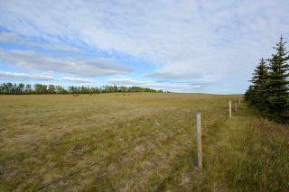 Photo 15: 17848 PRESPATOU Road in Fort St. John: Fort St. John - Rural W 100th Agri-Business for sale (Fort St. John (Zone 60))  : MLS®# C8038545