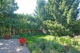 Photo 8: 157 Fincham Avenue in Markham: Markham Village House (2-Storey) for sale : MLS®# N3005634