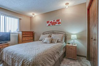 Photo 29: 87 Bermuda Close NW in Calgary: Beddington Heights Detached for sale : MLS®# A1073222