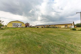 Photo 39: 472027 RR223: Rural Wetaskiwin County House for sale : MLS®# E4259110