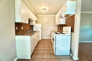 Photo 22: 2 10904 159 Street in Edmonton: Zone 21 Condo for sale : MLS®# E4250619