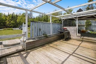Photo 5: 4355 Highway 7 in Porters Lake: 31-Lawrencetown, Lake Echo, Porters Lake Residential for sale (Halifax-Dartmouth)  : MLS®# 202114332