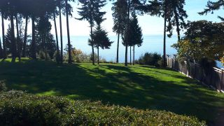 Photo 10: 1333 GOWER POINT Road in Gibsons: Gibsons & Area House for sale (Sunshine Coast)  : MLS®# R2335871