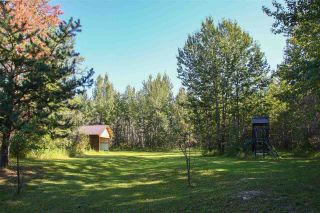 Photo 48: 2501 52 Avenue: Rural Wetaskiwin County House for sale : MLS®# E4228923