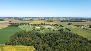 Photo 3: 22649-22697 NISSOURI Road in Thorndale: Rural Thames Centre Farm for sale (10 - Thames Centre)  : MLS®# 40162168