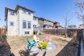 Photo 45: 100 Thornfield Close SE: Airdrie Detached for sale : MLS®# A1094943