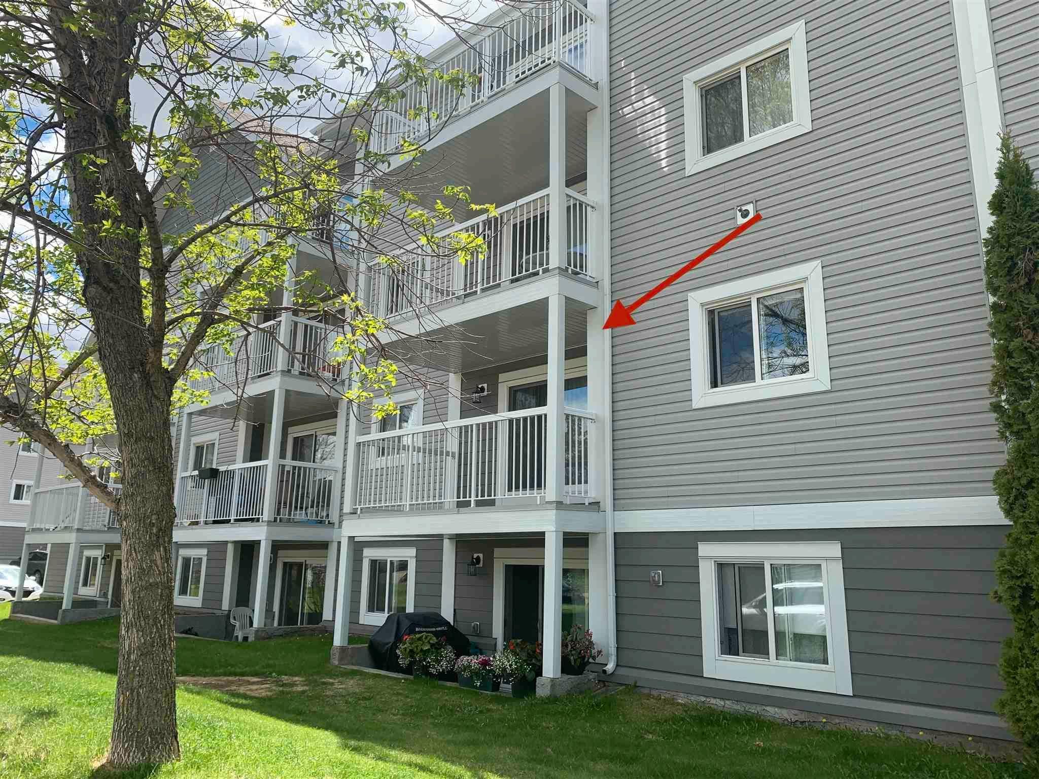 Main Photo: 206 5065 31 Avenue in Edmonton: Zone 29 Condo for sale : MLS®# E4246913