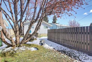 Photo 41: 1027 Penrith Crescent SE in Calgary: Penbrooke Meadows Detached for sale : MLS®# A1104837