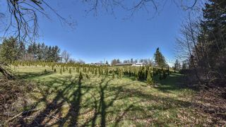 """Photo 9: 31945 GLENMORE Road in Abbotsford: Matsqui Land for sale in """"DOWNES RD"""" : MLS®# R2565768"""