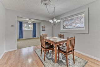 Photo 9: 8815 36 Avenue NW in Calgary: Bowness Detached for sale : MLS®# A1151045