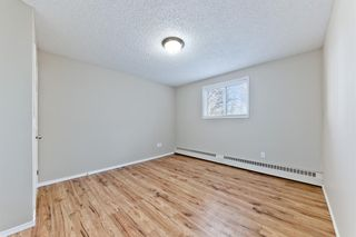 Photo 20: 103 11 Dover Point SE in Calgary: Dover Apartment for sale : MLS®# A1083330