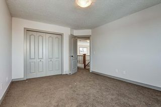 Photo 30: 36 ROYAL HIGHLAND Court NW in Calgary: Royal Oak Detached for sale : MLS®# A1029258