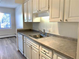 Photo 17: 303 11445 41 Avenue in Edmonton: Zone 16 Condo for sale : MLS®# E4225605