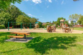 Photo 46: 3599 Cedar Hill Rd in : SE Cedar Hill House for sale (Saanich East)  : MLS®# 857617