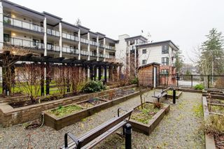 """Photo 36: 210 14358 60 Avenue in Surrey: Sullivan Station Condo for sale in """"Sullivan Station"""" : MLS®# R2230639"""