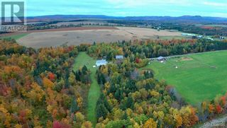 Photo 5: 799 Back Greenfield Road in Summerfield: Agriculture for sale : MLS®# NB060241