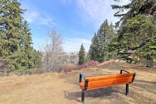Photo 45: 8 Wildwood Drive SW in Calgary: Wildwood Detached for sale : MLS®# A1070581