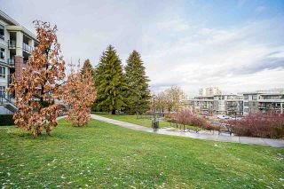 """Photo 33: 205 245 ROSS Drive in New Westminster: Fraserview NW Condo for sale in """"GROVE AT VICTORIA HILL"""" : MLS®# R2543639"""