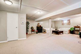 Photo 19: 38 Sturgeon Road: St. Albert House for sale : MLS®# E4240966
