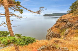 Photo 40: 172 Cliffside Rd in : GI Saturna Island House for sale (Gulf Islands)  : MLS®# 857035