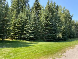 Photo 9: 32375 Range Road 62 Road: Rural Mountain View County Detached for sale : MLS®# A1139320