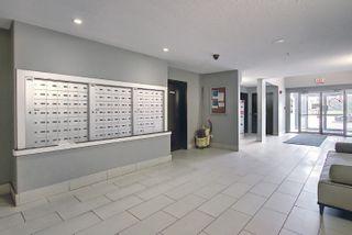 Photo 9: 115 14808 125 Street in Edmonton: Zone 27 Condo for sale : MLS®# E4247678