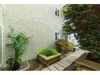 """Photo 20: 101 1351 MARTIN Street: White Rock Condo for sale in """"Dogwood Building"""" (South Surrey White Rock)  : MLS®# R2414214"""