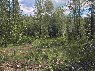 Photo 5: LOT 10 ISLAND PARK Drive in Prince George: Miworth Land for sale (PG Rural West (Zone 77))  : MLS®# R2388123