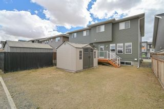 Photo 38: 162 REDSTONE Drive in Calgary: Redstone Semi Detached for sale : MLS®# A1102876