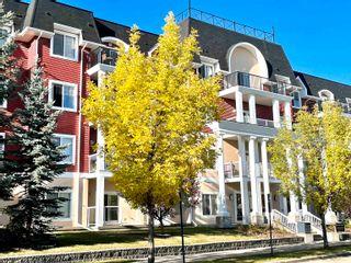 Photo 1: 215 226 MACEWAN Road in Edmonton: Zone 55 Condo for sale : MLS®# E4241529