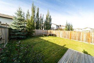 Photo 10: 11413 14 Avenue in Edmonton: Zone 55 House Half Duplex for sale : MLS®# E4258192