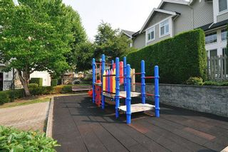 Photo 19: 28 23343 KANAKA WAY in Maple Ridge: Cottonwood MR Townhouse for sale : MLS®# R2303709