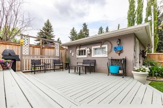 Photo 19: 73 Langton Drive SW in Calgary: North Glenmore Park Detached for sale : MLS®# A1112301