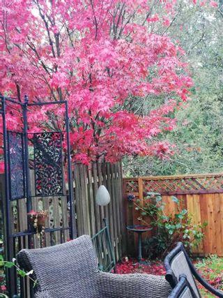 "Photo 25: 29 12227 SKILLEN Street in Maple Ridge: Northwest Maple Ridge Townhouse for sale in ""MCKINNEY CREEK ESTATE"" : MLS®# R2571968"