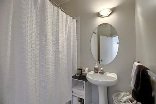 Photo 17: 501 1410 2 Street SW in Calgary: Beltline Apartment for sale : MLS®# A1060232