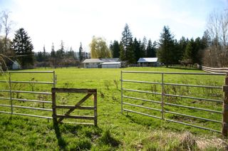 Photo 59: 21 McManus Road: Grindrod House for sale (Shuswap Region)  : MLS®# 10114200