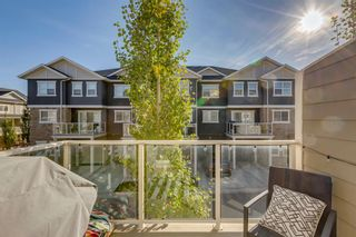 Photo 17: 203 Evanston Manor NW in Calgary: Evanston Row/Townhouse for sale : MLS®# A1149522
