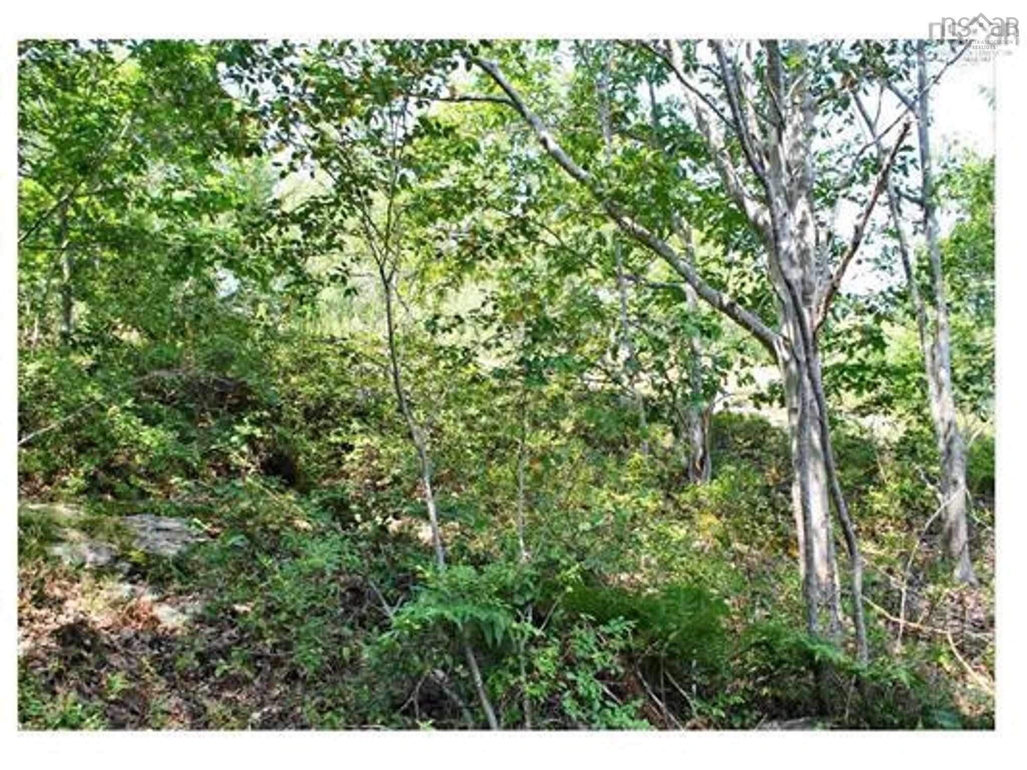Main Photo: Lot 9 32 Frederick Street in Bedford: 20-Bedford Vacant Land for sale (Halifax-Dartmouth)  : MLS®# 202122429