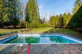 "Photo 21: 25772 116 Avenue in Maple Ridge: Websters Corners House for sale in ""WEBSTERS CORNERS"" : MLS®# R2540128"