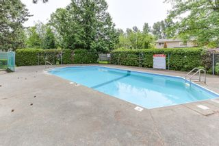 """Photo 28: 3 9994 149 Street in Surrey: Guildford Townhouse for sale in """"TALL TIMBERS"""" (North Surrey)  : MLS®# R2369624"""