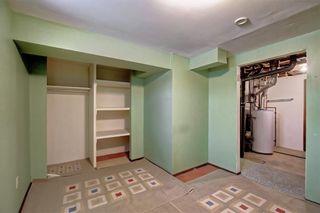 Photo 28: 283 QUEENSLAND Circle SE in Calgary: Queensland Detached for sale : MLS®# C4290754