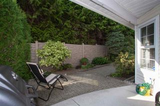 """Photo 18: 4 6537 138 Street in Surrey: East Newton Townhouse for sale in """"Charleston Green"""" : MLS®# R2303833"""